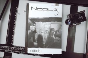 Magazyn Negliż nr 2.